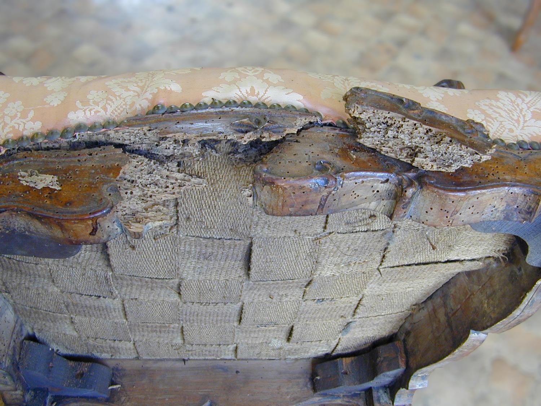 Traverse de façade du fauteuil Régence cassé en quatre par l'attaque des insectes xylophages.
