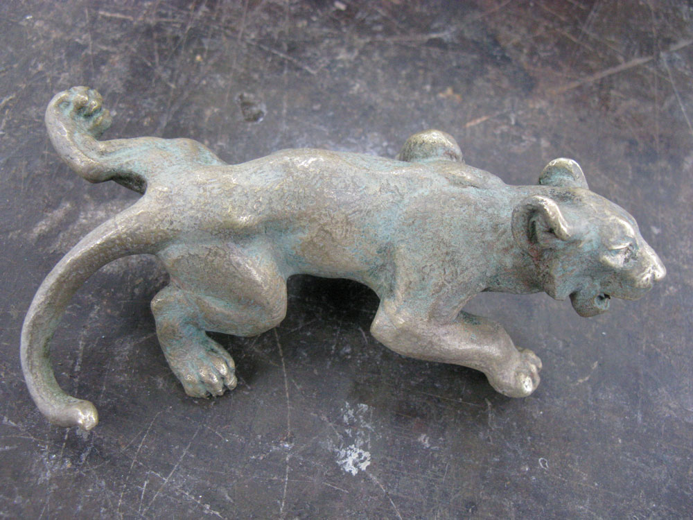 Détail de l'état d'altération d'un lionceau.